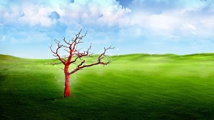 beautiful scenery pictures - In 3D Style, the Red Tree Standing Alone in the Green Field