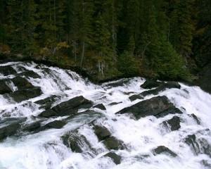 Natural Landscape Images, Water in Rapid Flow, Green Plants Alongside, Prosperous Scene