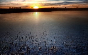Natural Scenery Wallpaper - The Rising Sun is Softly Touching Everything, It is Sweet and Kind