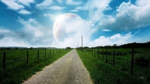 photo of nature - Green Plants Divided by a Narrow White Road, the Rising Moon