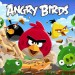 Angry Birds Poster, Excited Angry Birds, Scared Pigs in Sweat